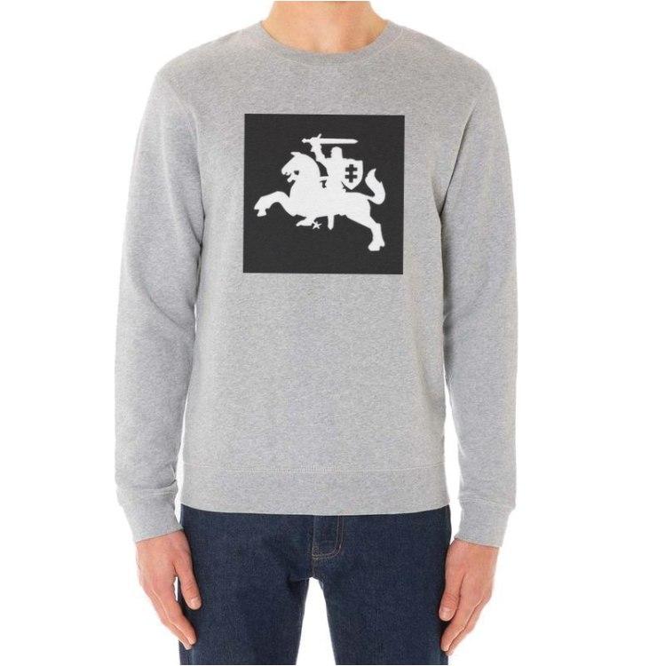 Vytis džemperis