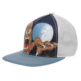 Vaik. Tony Hawk kepurė
